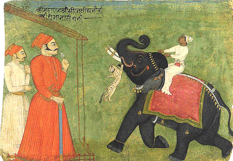 ** Raja Dheeraj Singhji of Raghogarh watching an Elephant attacked by Leopard **